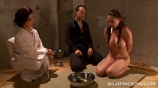 Asian, BDSM, Big Boobs, Blowjob, Creampie, Fucking
